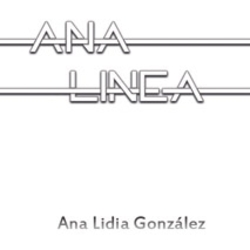 Analinea_cuadro_preview