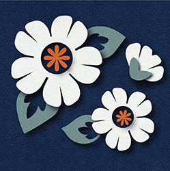 Septemberhouse-shop-icon_small_preview