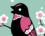 Birdie_profile_pic_preview