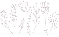 Botanicals_scan_muted_1inch_preview