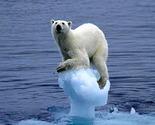 Wpid-iceberg1dm0404_468x670-2011-02-28-03-33_thumb