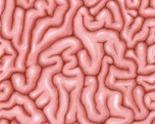 Brain_emblem_thumb