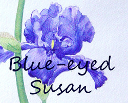 Blue-eyedsusan_preview