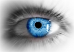 My_eye-1-focal_zoomed_blue_preview