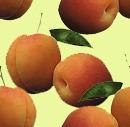 Peach_1_preview