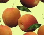 Peach_1_thumb