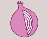 Onionicon_preview