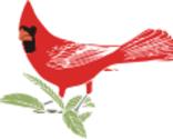Birdavatar_thumb