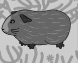 Pig_pattern_2_thumb
