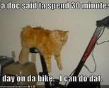 Funny-pictures-cat-excercise-bike_thumb