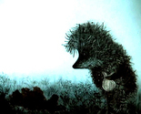 Hedgehog-in-the-fog_thumb