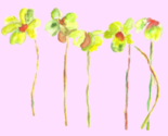 Blumen10_thumb