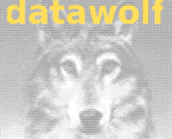 datawolf
