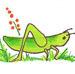 Grasshopper2copyavatar_preview