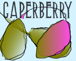 Caperberry_preview