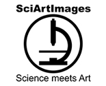 Sciartimages_logo_thumb