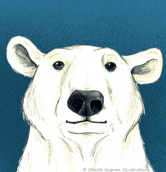 Polar_bear_icon_preview