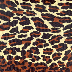 Leopard_preview