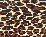 Leopard_thumb