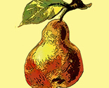 Pear_store_image_thumb