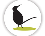 Curiousbird_greenbadge_thumb