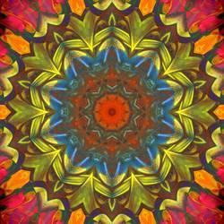 Square_burst_from_fingerpainted_plate_preview