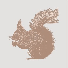 Spoonflower_squirrel_preview