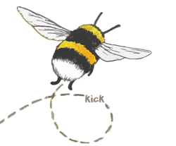 My_bumblebee_avatar_-_full_size_-_wider_preview