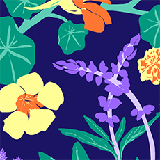Wild_herbs_small_preview