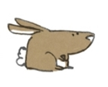 Rabbit_thumb