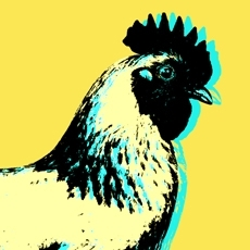 Chickenprofilepic_preview